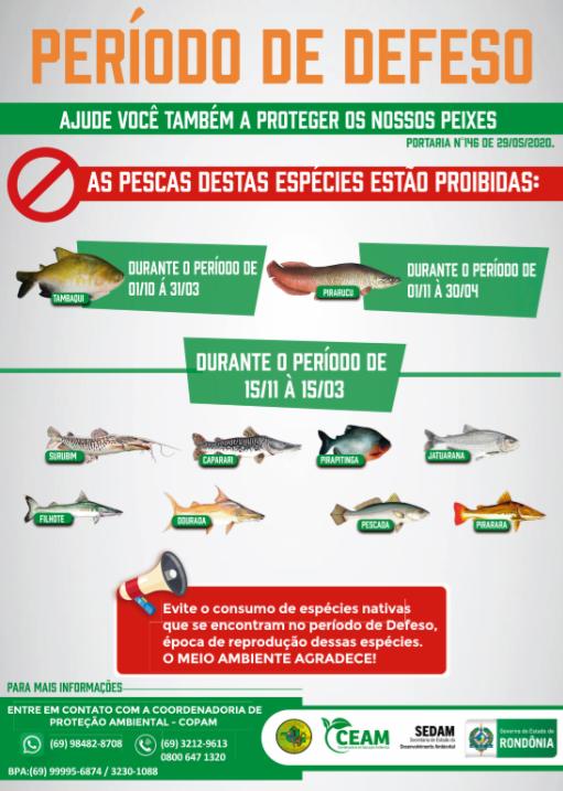 PERÍODO DE DEFESO PESQUEIRO EM MONTE NEGRO 2020/2021